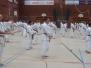 Karatelehrgang für Schwarzgurte 2002